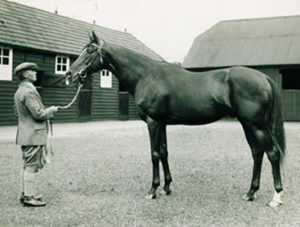 Epsom Derby winner BLENHEIM II stood at Claiborne and was the sire of 1941 Triple Crown winner WHIRLAWAY.