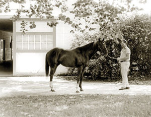 The great SECRETARIAT was syndicated by Seth Hancock to stand at Claiborne.